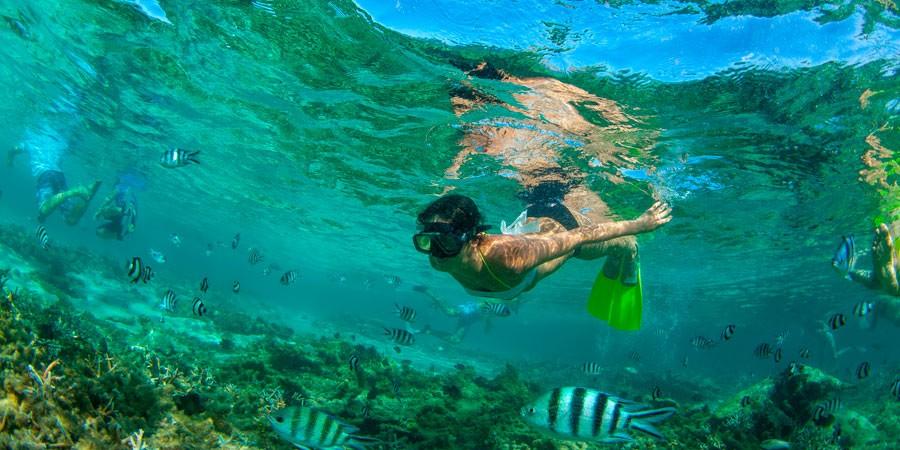 Desvende-o-Caribe-Brasileiro-nos-melhores-hoteis-em-Maragogi1-900x450