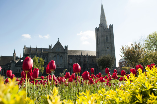 Catedral St. Patrick em Dublin, Irlanda